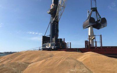 BERGÉ carga 27.500 toneladas de trigo duro en Cádiz para Túnez