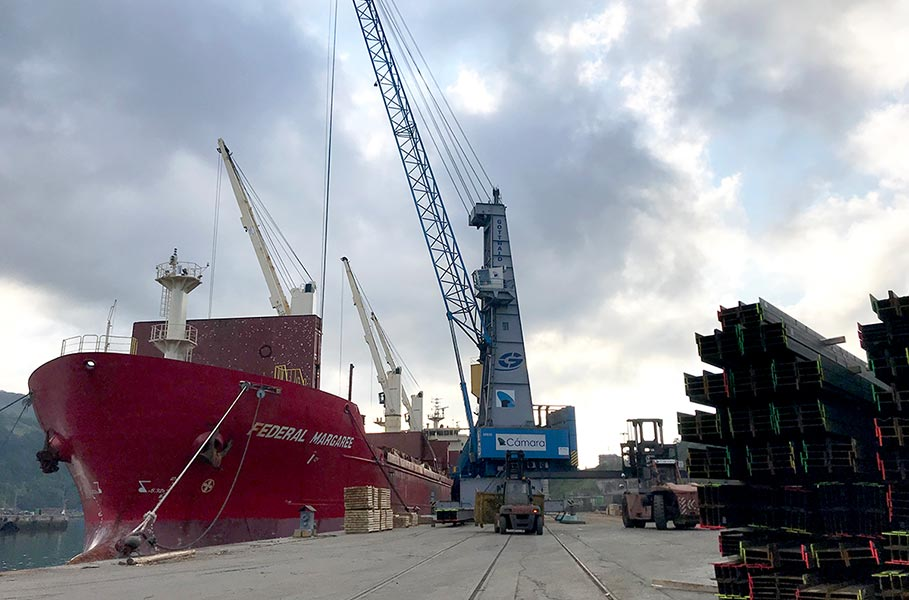 The company Sobrinos de Manuel Cámara, which BERGÉ has shares in, manages a maximum length bulk carrier in the Pasaia Port